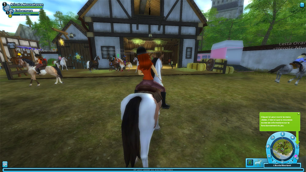 Star Stable Test Du Jeu