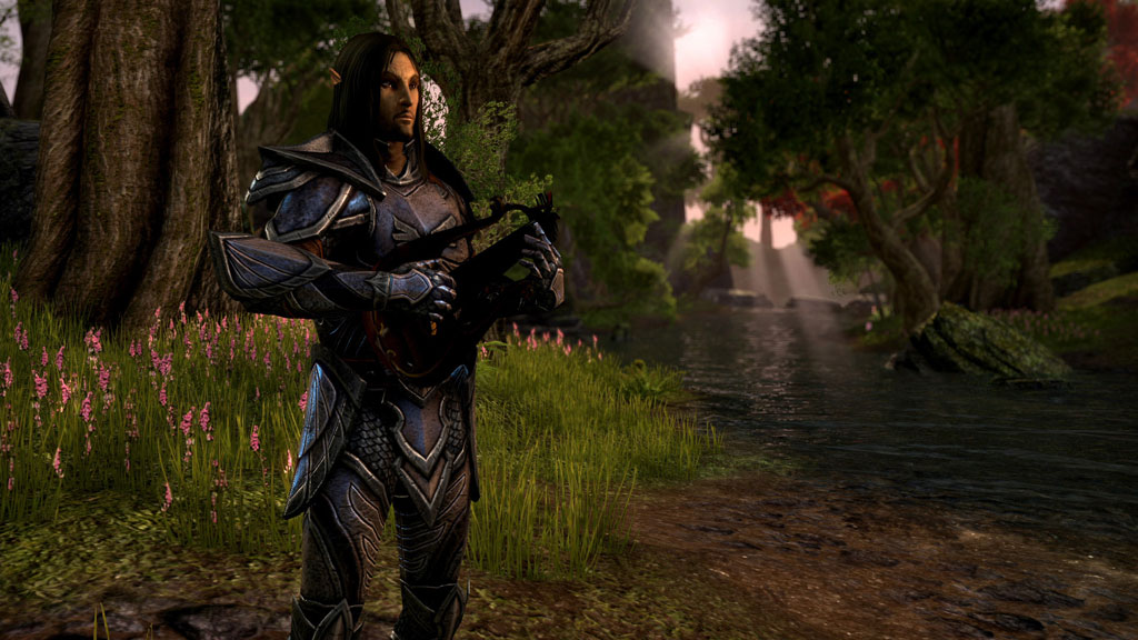 screeshot the-elder-scrolls-online