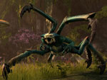 screeshot 1398018718 the-elder-scrolls-online